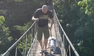 Dad Helps Dog Hesitant to Cross Bridge