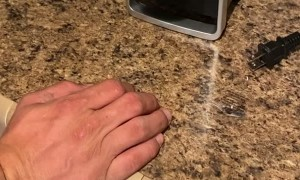 Can Opener Surprises Man by Opening Can
