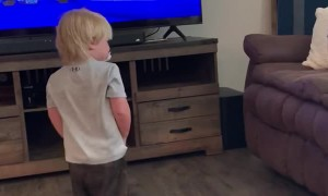 Goldendoodle Keeps Kid Off Couch