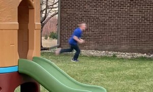 Escaped Rooster Chases a Boy During Birthday Party