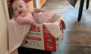 Robot Vacuum Spins Baby in Box