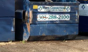 Man Helps Rescue a Racoon Stranded in Dumpster