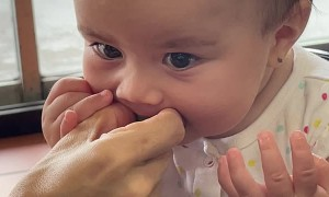 Baby Learns About Limes