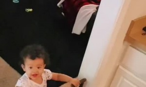Baby girl has the sweetest reaction when dad comes home