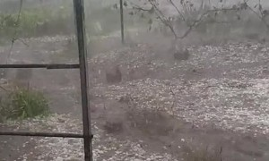 Huge Hail Falls From Storm Over Krasnodar