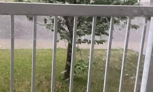 Golf Ball Hail Rains Down in Calgary