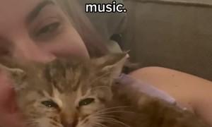 Kitten Has an Unusual Scream