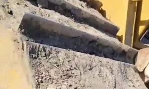 Goat Got Stuck in Bulldozer