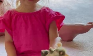 Hungry Toddler Has Terrifying Tone