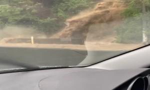 Burst Half Pipe Causes Flooding on Wellington Road