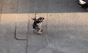 Unicycling Villain Plays Fire-Spitting Bagpipes