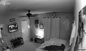 Balloon Caught in Ceiling Fan Scares Son