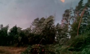 Close Encounter with Tornado at Work