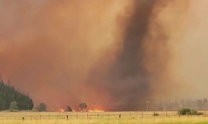 Large Firenado Forms in Dixie Fire in California
