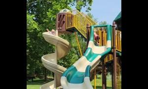 Corgi Races to Play on Swirly Slide