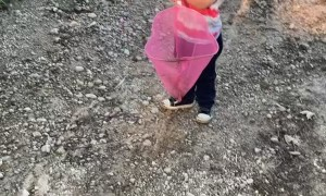Boy Catches Stone Frog in His Net