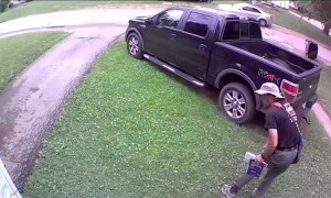 Neighbor's Dog Bites Mailman