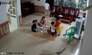 Family Dinner Interrupted by Falling Fan