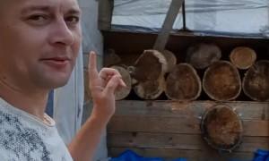 Man Sticks Glass Bottle into Moving Tree Target