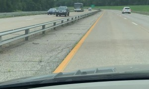 Escaped Racehorse Runs Down Expressway