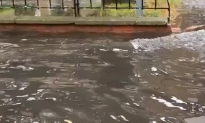 Electric Scooter Takes a Spill in Puddle