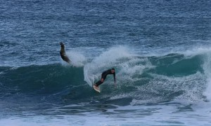 Surfer Dropped In By A Seal