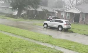 Wind Blows Massive Tree onto Neighbors House