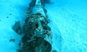 Scuba Divers Explore the Corsair Dive Site