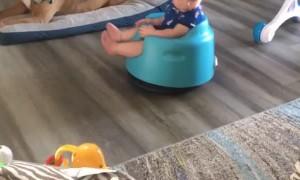 Baby Enjoys Ride on Roomba Vacuum