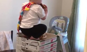Cheeky Toddler Caught Helping Himself to Pizza