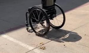 Rolling Wheelchair Returns