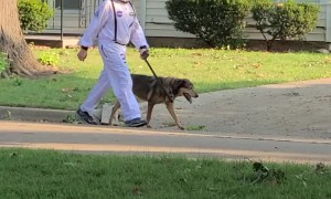 Astronaut and Dog Take A Walk