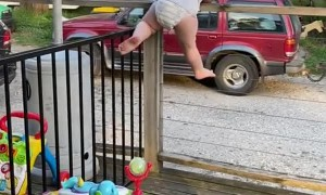 Acrobatic Toddler Can't Be Contained by Fence