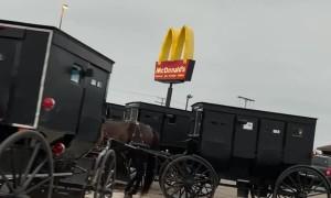 Group of Amish Buggies Parked at McDonald's