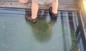 Toddlers Attempt to Cross onto Glass Bridge