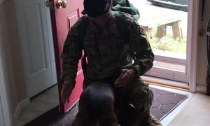 Airman Surprises His Furry Friend After 6 Months Away