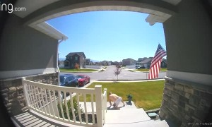 Guy Checking Flag Mount Falls Down Stairs