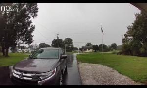 Lightning Shocks Nearby Tree