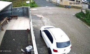 Dog Doesn't Brake and Crashes into Gate