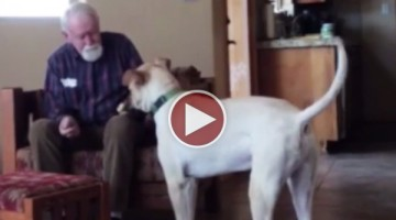 Watch A Man With Alzheimers Have The Most Heart Breaking Conversation With His Dog