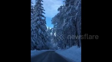 Stunning footage of Yosemite National Park after a huge snowstorm