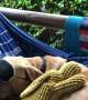 Peaceful Pooch Slumbers in Hammock