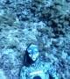 Freediver Blows Some Bubbles