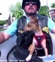 Dude and Dog Go Riding